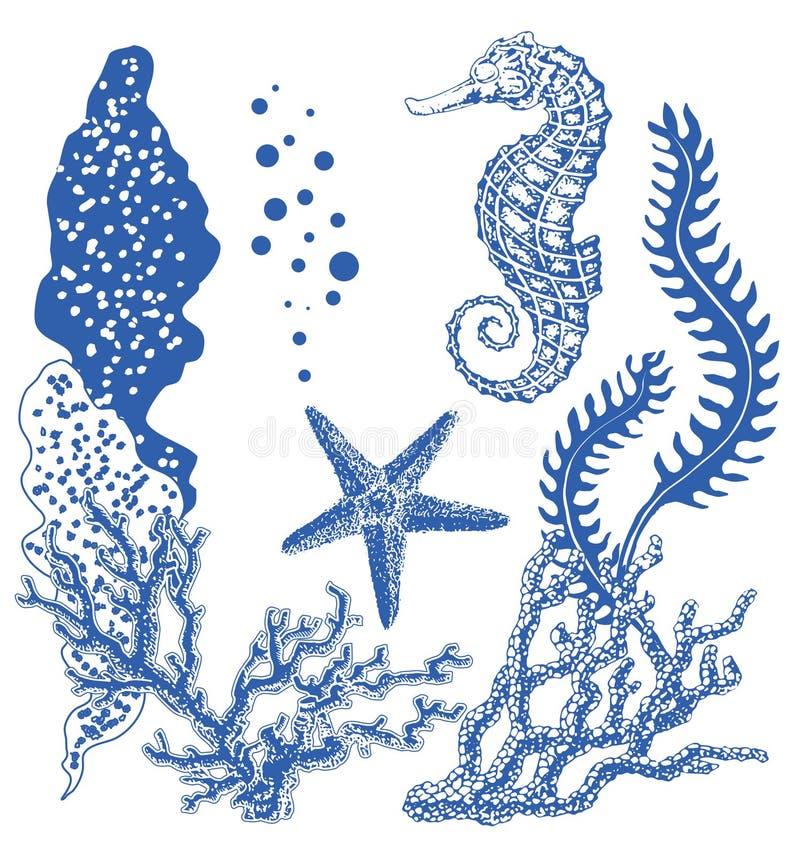 Γραφική κοραλλιογενής ύφαλος με το άλογο θάλασσας, αστέρι θάλασσας, αστερίας, φύκι, κοράλλια, κάτω από το θέμα θάλασσας, σύνολο σ διανυσματική απεικόνιση
