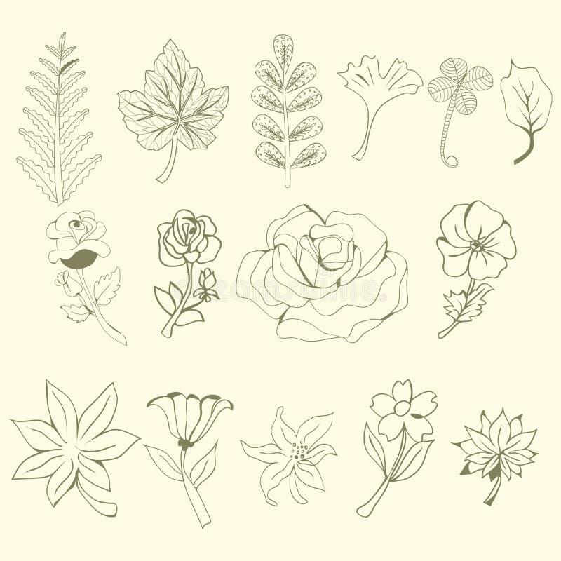 Γραφική συλλογή με τα φύλλα και τα λουλούδια, που σύρουν τα στοιχεία ελεύθερη απεικόνιση δικαιώματος