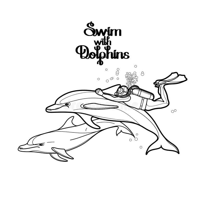 Γραφικός δύτης σκαφάνδρων που οδηγά το δελφίνι ελεύθερη απεικόνιση δικαιώματος
