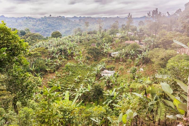 Γραφικό αγροτικό τοπίο στις ορεινές περιοχές της Γουατεμάλα στοκ εικόνα με δικαίωμα ελεύθερης χρήσης