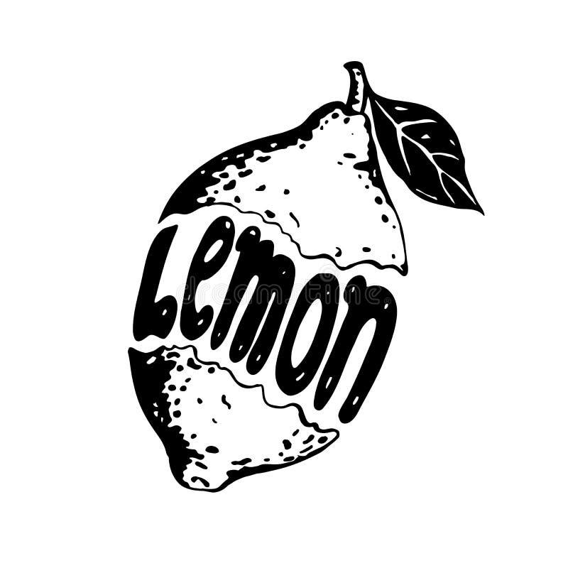 Γραφικό γραπτό λεμόνι στο άσπρο υπόβαθρο με το λεμόνι επιγραφής μέσα διανυσματική απεικόνιση