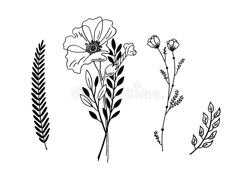Γραφικό σχέδιο σκίτσων λουλουδιών Minimalistic, καθιερώνον τη μόδα μικροσκοπικό σχέδιο δερματοστιξιών, floral βοτανικό στοιχείο διανυσματική απεικόνιση