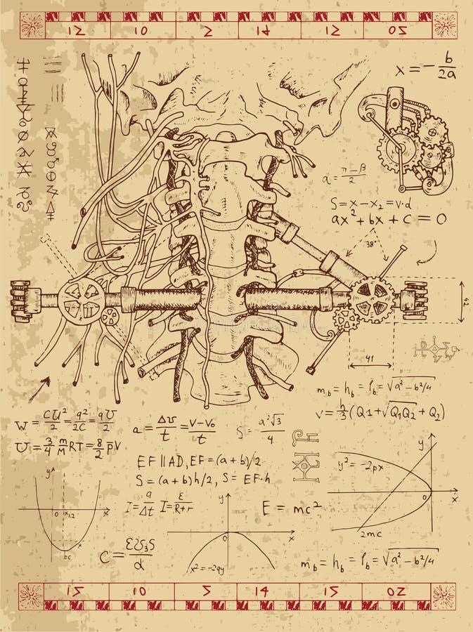 Γραφικό σύνολο με τον ανθρώπινους λαιμό και τους μηχανισμούς ανατομίας ελεύθερη απεικόνιση δικαιώματος