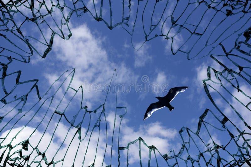 γυαλί εμφανισμένο ουρανό& στοκ φωτογραφίες με δικαίωμα ελεύθερης χρήσης
