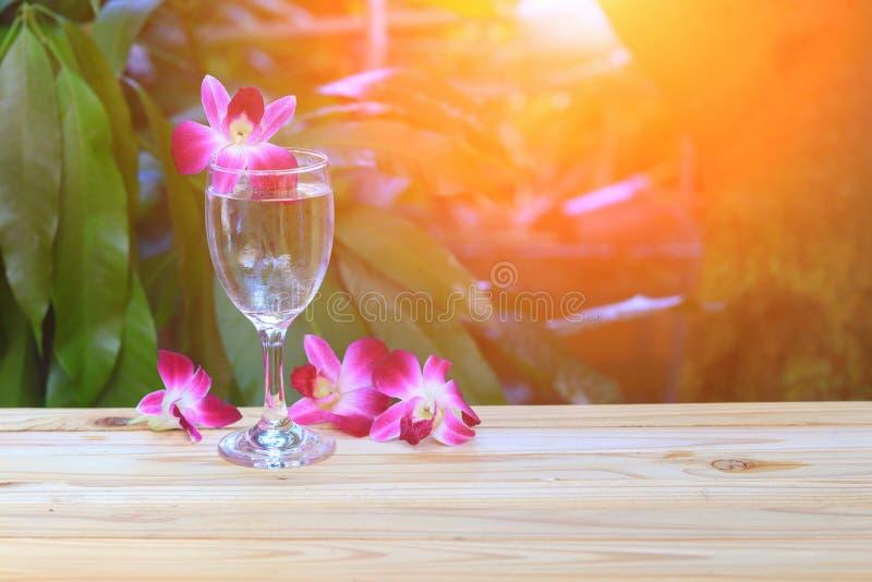 γυαλί νερού δροσερό με την πορφύρα ορχιδεών στον ξύλινο πίνακα πατωμάτων με τον ελαφρύ τόνο ηλιοβασιλέματος στοκ εικόνες