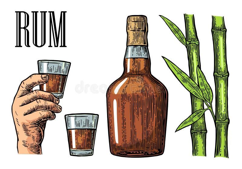 Γυαλί και μπουκάλι του ρουμιού με τον κάλαμο ζάχαρης απεικόνιση αποθεμάτων
