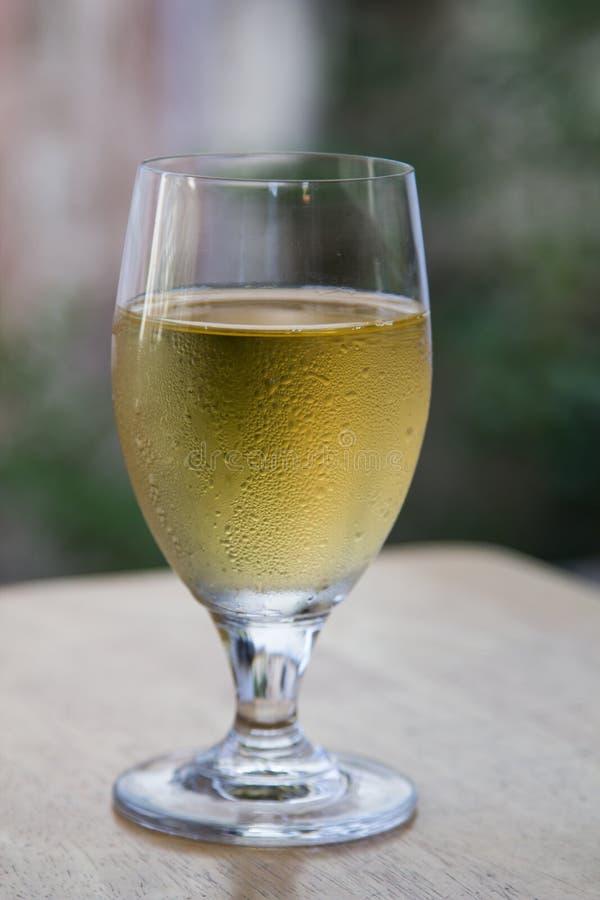 Γυαλί κρασιού στοκ φωτογραφίες με δικαίωμα ελεύθερης χρήσης
