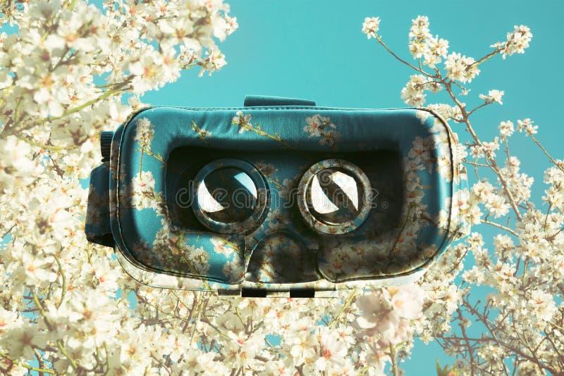 Γυαλιά εικονικής πραγματικότητας, που επιβάλλονται στα δέντρα τα ρόδινα λουλούδια στο s στοκ φωτογραφία με δικαίωμα ελεύθερης χρήσης