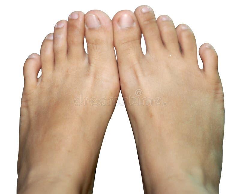 Γυμνά γυναικεία πόδια στο άσπρο υπόβαθρο στοκ εικόνα με δικαίωμα ελεύθερης χρήσης