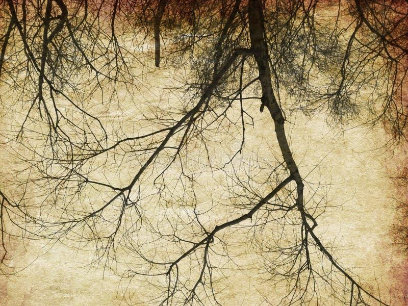 Γυμνές σκιαγραφίες δέντρων Grunge στοκ φωτογραφία