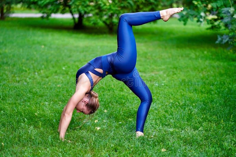 Γυμναστική Νέα περισυλλογή γιόγκας άσκησης γυναικών στη φύση ένα πάρκο Έννοια τρόπου ζωής υγείας στοκ φωτογραφία