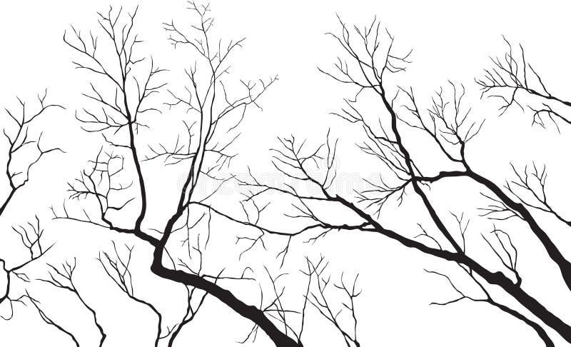 γυμνοί κλάδοι διανυσματική απεικόνιση