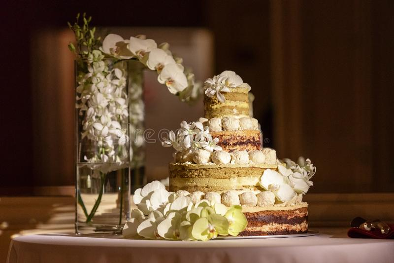 Γυμνό γαμήλιο κέικ Unfrosted στοκ εικόνες με δικαίωμα ελεύθερης χρήσης