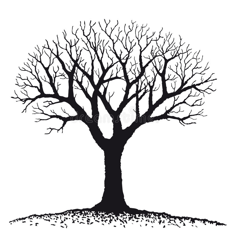 γυμνό διάνυσμα δέντρων ελεύθερη απεικόνιση δικαιώματος