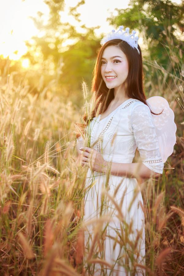 Γυναίκα αγγέλου σε έναν τομέα χλόης με το φως του ήλιου στοκ εικόνες