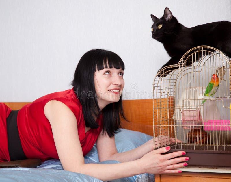 γυναίκα βασικών κατοικίδιων ζώων στοκ εικόνες