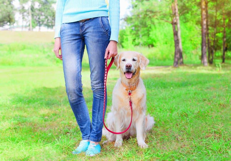 Γυναίκα ιδιοκτητών με το χρυσό Retriever σκυλί που περπατά μαζί στο πάρκο στοκ εικόνα