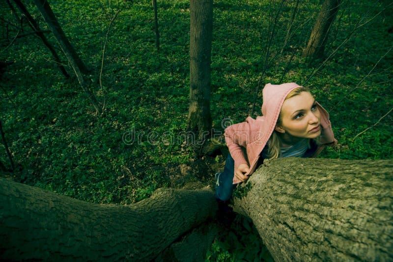 γυναίκα κορμών δέντρων εκμ&e στοκ εικόνες
