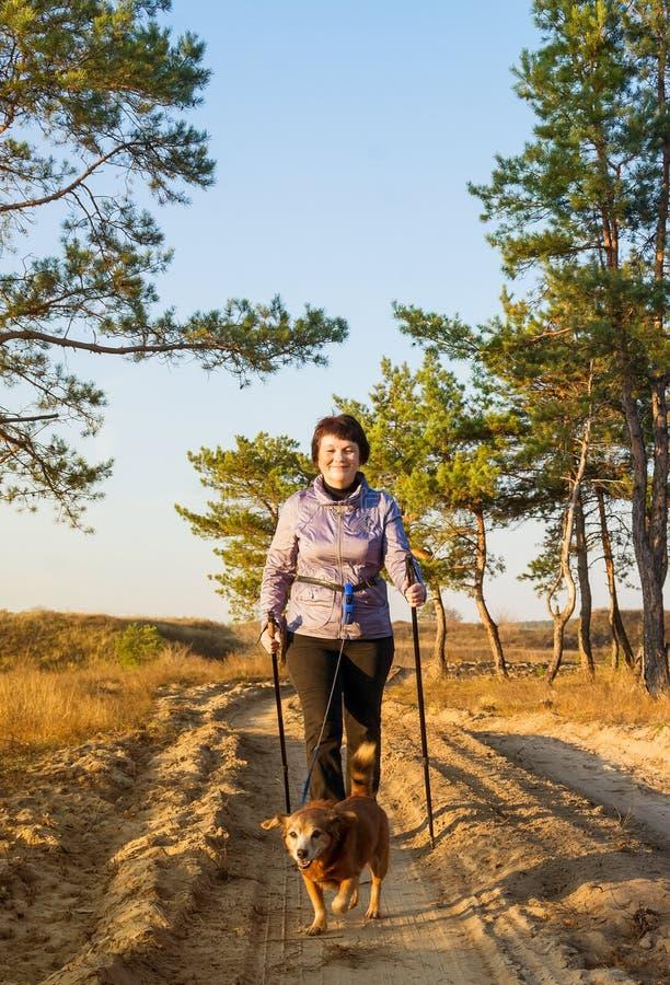 Γυναίκα με τα ραβδιά για το περπάτημα και σκυλί στον περίπατο στοκ φωτογραφία
