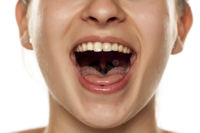 Γυναίκα με το ανοικτό στόμα στοκ φωτογραφία με δικαίωμα ελεύθερης χρήσης