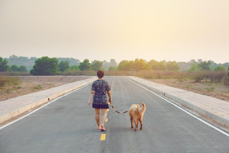 Γυναίκα με το χρυσό retriever της σκυλί που περπατά στο δημόσιο δρόμο στοκ φωτογραφίες