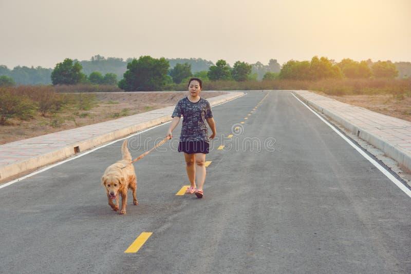 Γυναίκα με το χρυσό retriever της σκυλί που περπατά στο δημόσιο δρόμο στοκ φωτογραφία με δικαίωμα ελεύθερης χρήσης