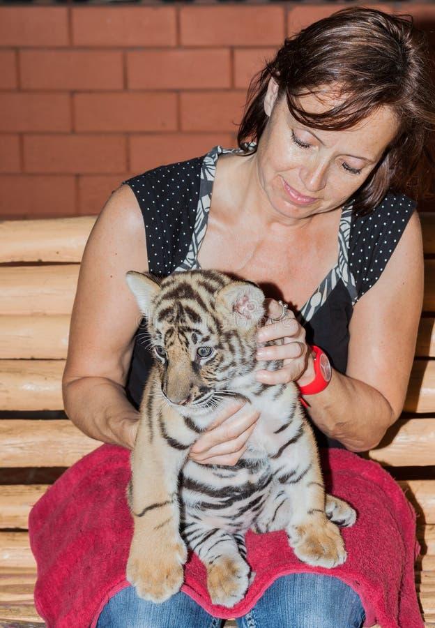 Γυναίκα με cub τιγρών στην περιτύλιξή της στοκ εικόνες
