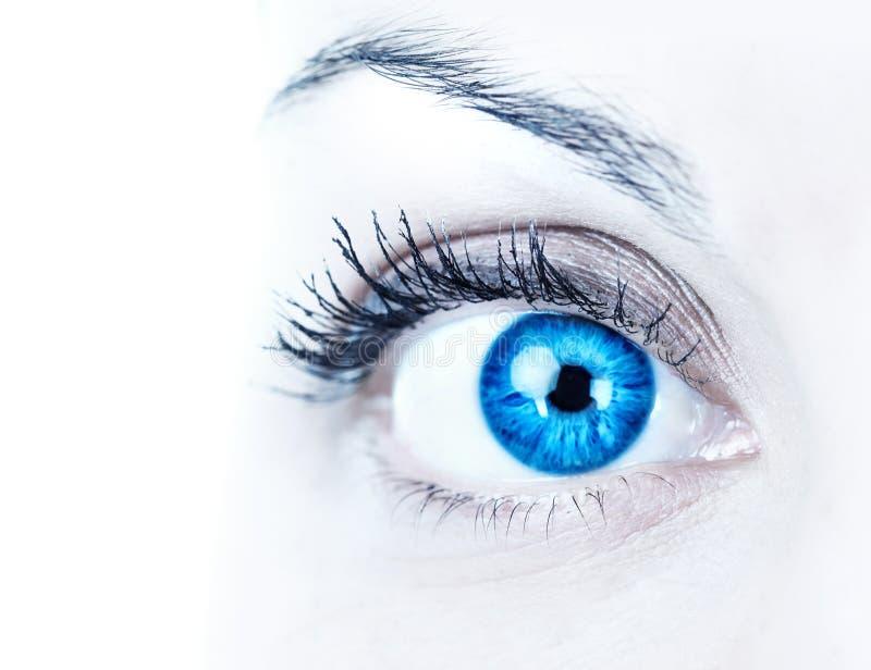 γυναίκα μπλε ματιών στοκ εικόνα