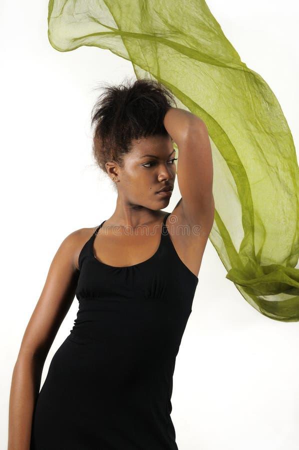 Γυναίκα μόδας αφροαμερικάνων στοκ εικόνες με δικαίωμα ελεύθερης χρήσης