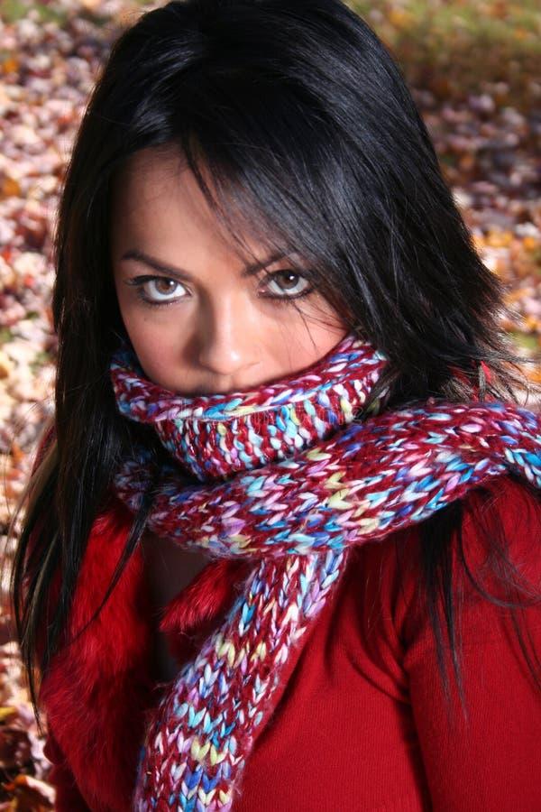 Download γυναίκα μόδας πτώσης προκ&la Στοκ Εικόνες - εικόνα από σακάκι, κορίτσι: 1548480