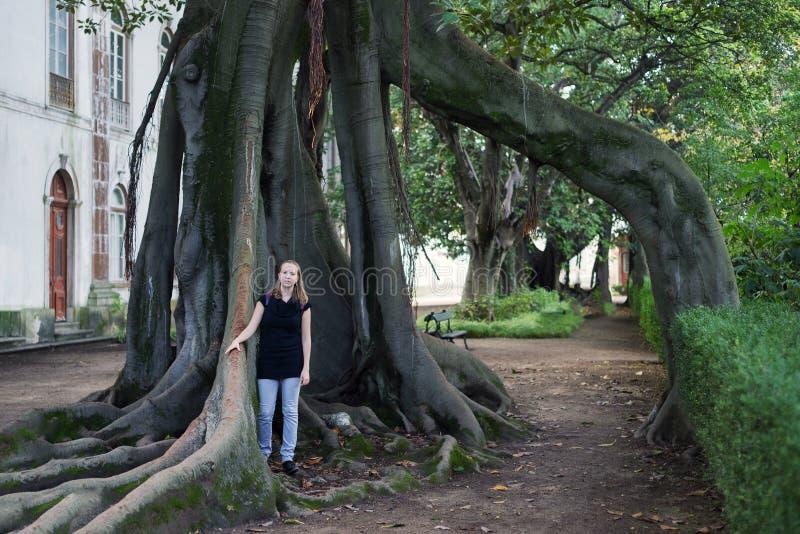 Γυναίκα νέων κοριτσιών στις υπαίθριες ρίζες δέντρων πάρκων στοκ φωτογραφίες