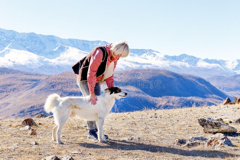 Γυναίκα Πεζοπορία Στα Βουνά Με Σκύλο στοκ φωτογραφία με δικαίωμα ελεύθερης χρήσης