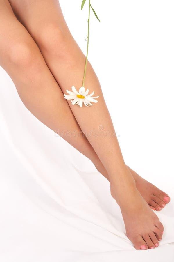 γυναίκα ποδιών στοκ εικόνα
