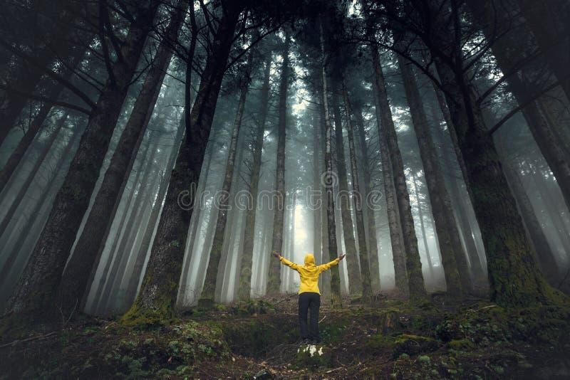 Γυναίκα που απολαμβάνει τη φύση στοκ εικόνες