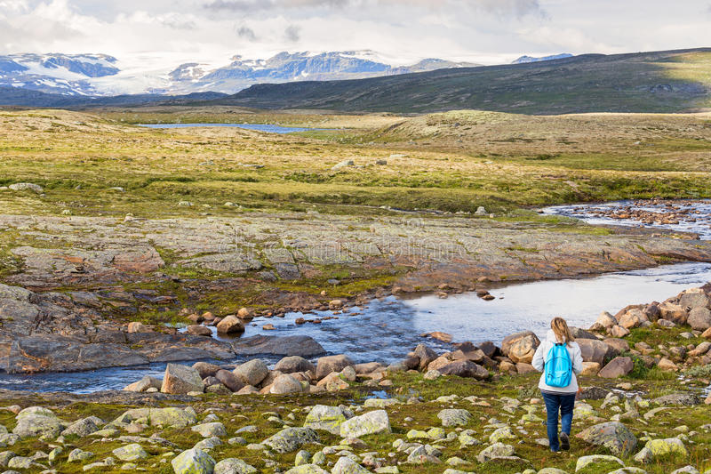 Γυναίκα που εξετάζει το εθνικό πάρκο Hardangervidda στοκ φωτογραφία με δικαίωμα ελεύθερης χρήσης
