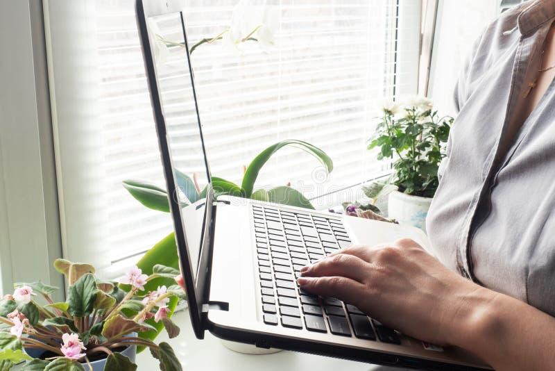Γυναίκα που εργάζεται σε χέρια υπολογιστών στο σπίτι Έννοια της εργασίας και της μάθησης στο σπίτι Αντιγραφή χώρου στοκ εικόνες