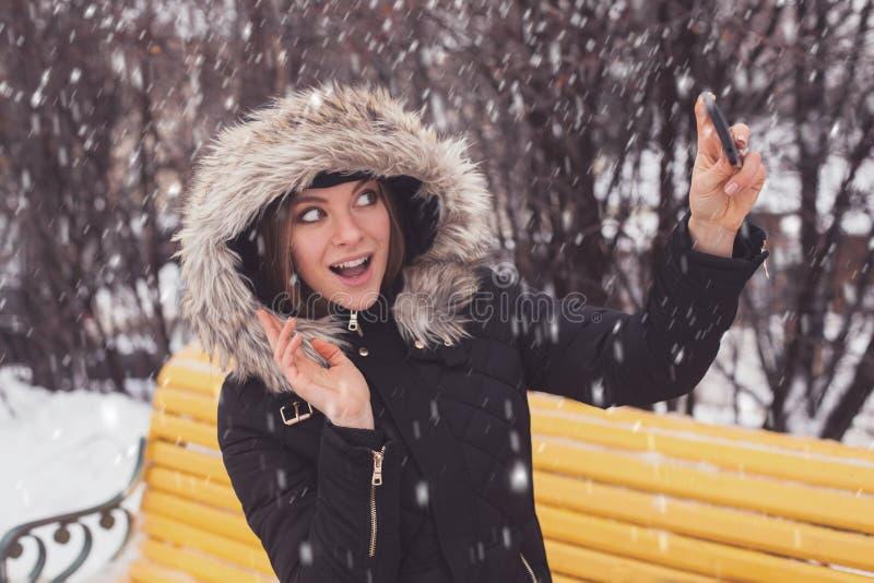 Γυναίκα που κάνει selfie στο χειμερινό πάρκο στοκ εικόνα με δικαίωμα ελεύθερης χρήσης