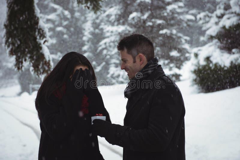 Γυναίκα που καλύπτει τα μάτια της ενώ άνδρας που δίνει το αιφνιδιαστικό δώρο στο δάσος στοκ φωτογραφίες με δικαίωμα ελεύθερης χρήσης