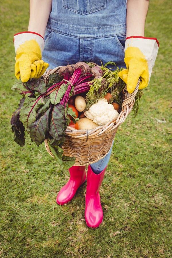 Γυναίκα που κρατά ένα καλάθι των πρόσφατα συγκομισμένων λαχανικών στοκ φωτογραφία με δικαίωμα ελεύθερης χρήσης