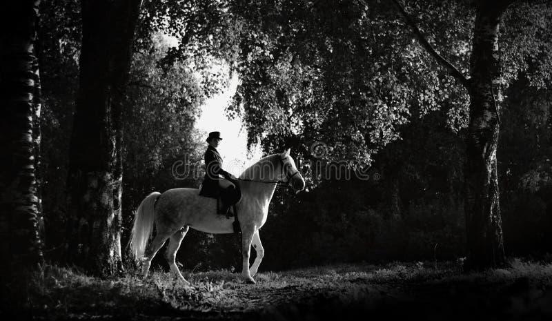 Γυναίκα που οδηγά σε ένα άσπρο άλογο σκιαγραφία στοκ φωτογραφίες με δικαίωμα ελεύθερης χρήσης