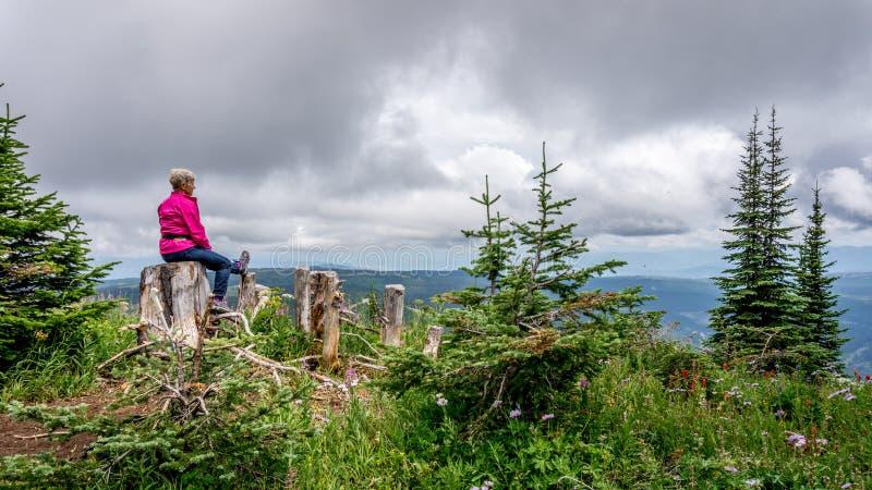 Γυναίκα που παίρνει ένα υπόλοιπο σε ένα κολόβωμα δέντρων στοκ εικόνες με δικαίωμα ελεύθερης χρήσης
