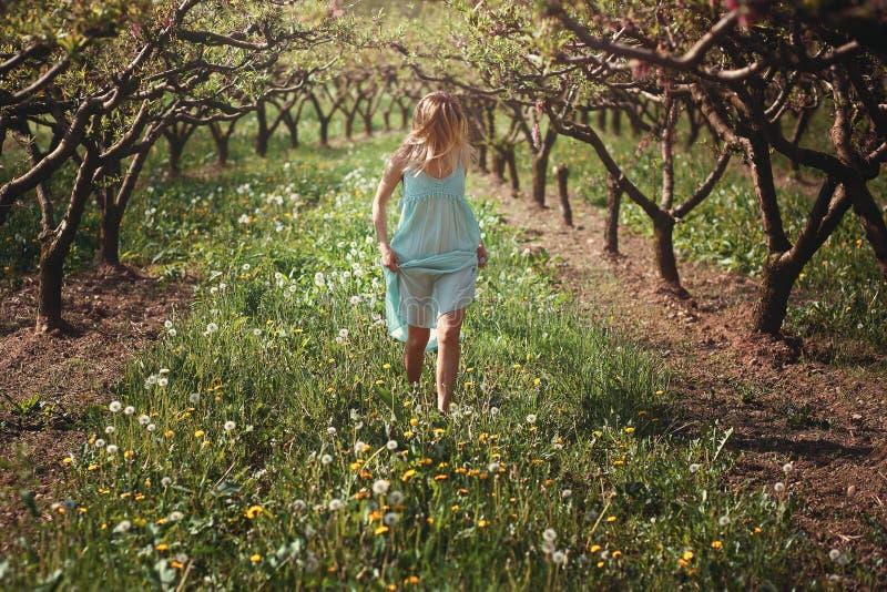 Γυναίκα που περπατά μεταξύ των λουλουδιών στοκ εικόνα
