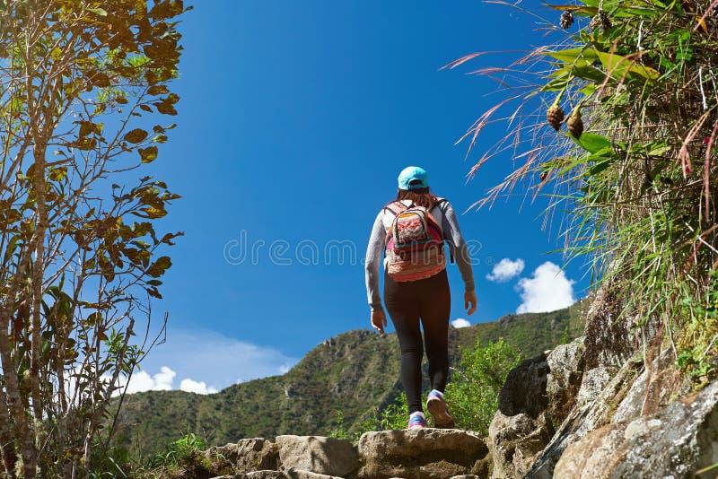 Γυναίκα που περπατά στο ίχνος βουνών στοκ φωτογραφία με δικαίωμα ελεύθερης χρήσης