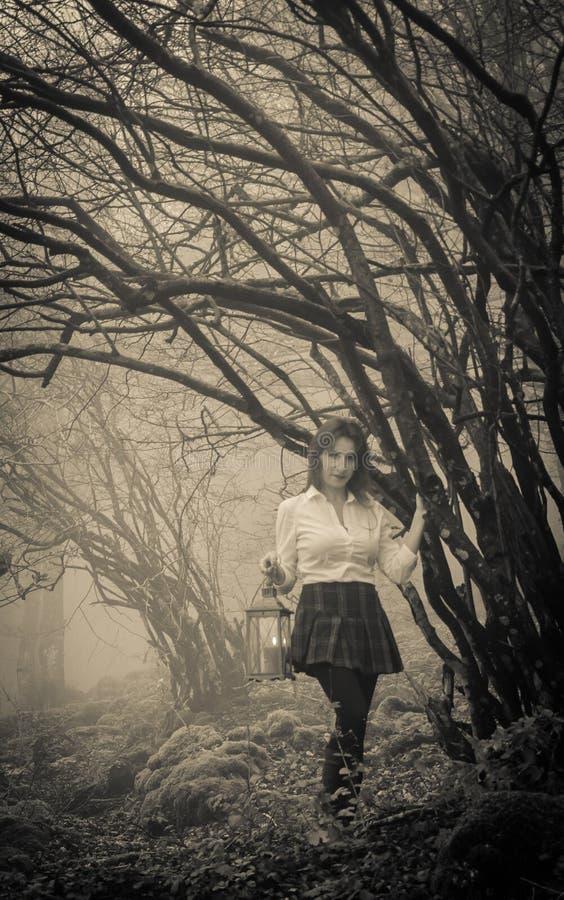 Γυναίκα που περπατά στο σκοτεινό δάσος με το φανάρι στοκ εικόνες