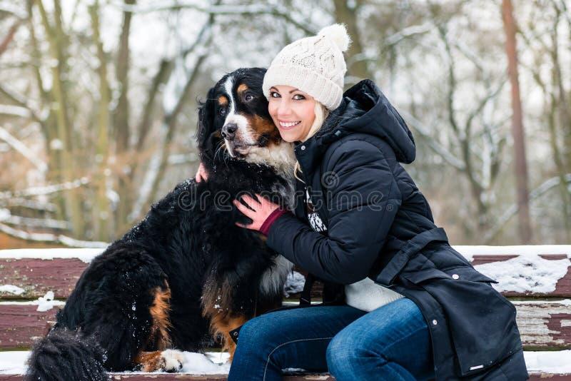 Γυναίκα που περπατά το σκυλί βουνών Bernese μια χειμερινή ημέρα στοκ εικόνα