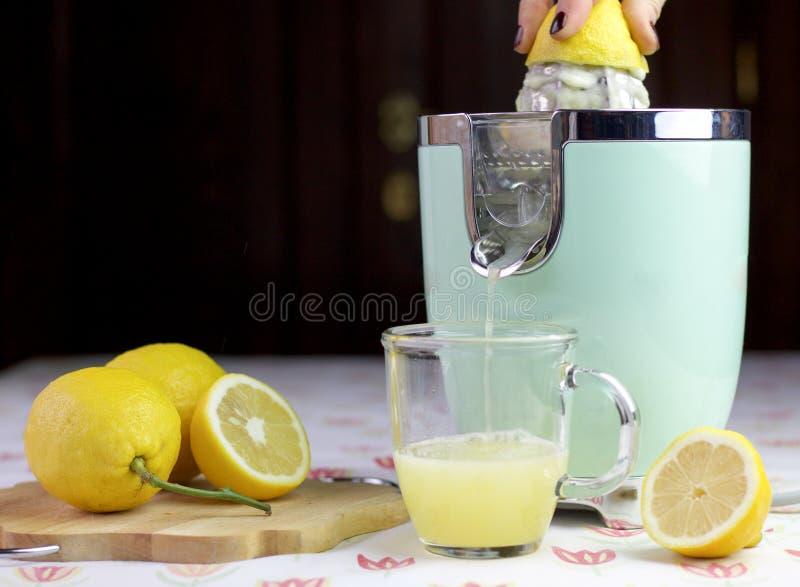 Γυναίκα που προετοιμάζει έναν φρέσκο χυμό λεμονιών, φρούτα στον πίνακα στο ξύλο στοκ εικόνες με δικαίωμα ελεύθερης χρήσης