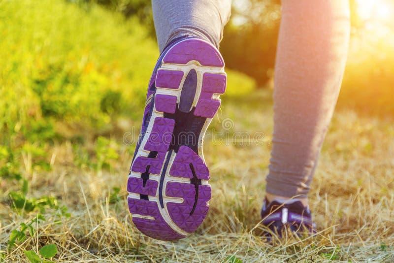 Γυναίκα που τρέχει σε έναν τομέα ελεύθερη απεικόνιση δικαιώματος