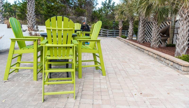 Γυναίκα που υπερασπίζεται τις μεγάλες πράσινες έδρες στο patio στοκ φωτογραφία με δικαίωμα ελεύθερης χρήσης