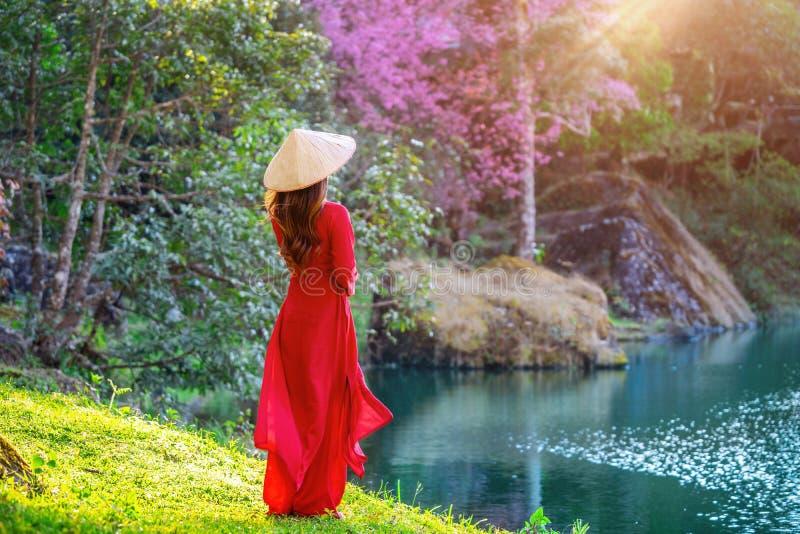 Γυναίκα που φορά τον πολιτισμό του Βιετνάμ παραδοσιακό στο πάρκο ανθών κερασιών στοκ φωτογραφία με δικαίωμα ελεύθερης χρήσης