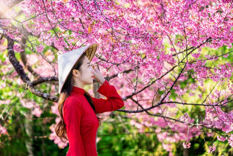 Γυναίκα που φορά τον πολιτισμό του Βιετνάμ παραδοσιακό στο πάρκο ανθών κερασιών στοκ εικόνα